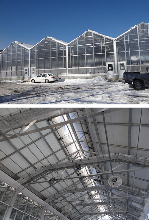 With 16-foot side walls and 23-feet tall to the peak, things are really looking up at the new, state-of-the-art SUNY Cobleskill greenhouses.